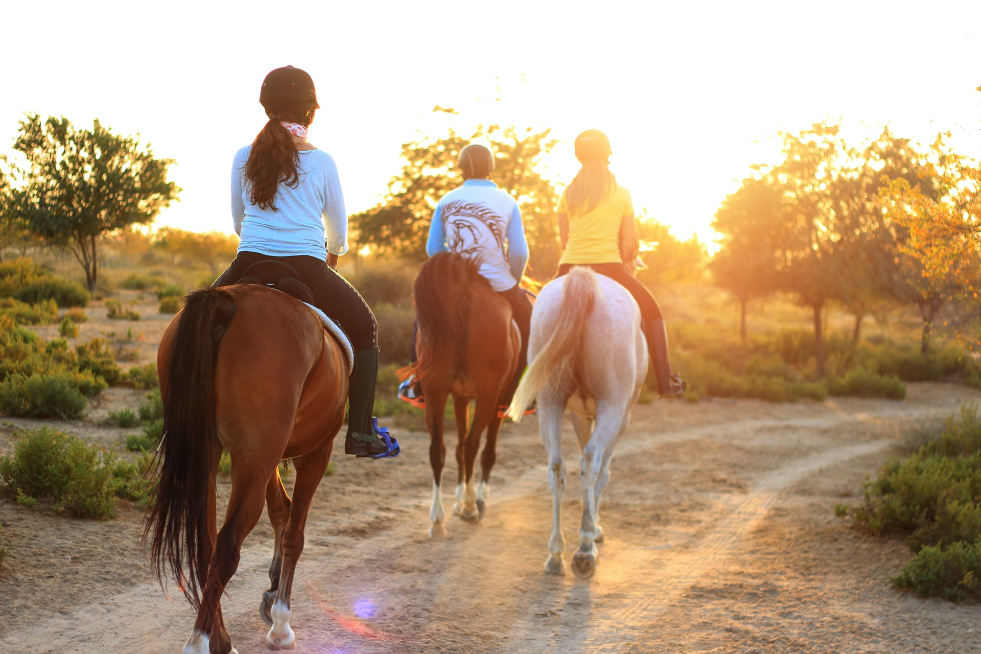 Equine-assisted-therapy-substance-abuse-treatment-plum-creek-recovery-ranch-austin-texas